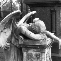 Parigi. L'uomo tra Dio e i Kalashnikov. Post sugli Angeli. Tre.
