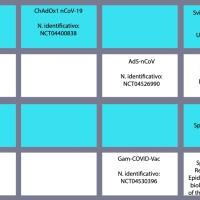 Covid, tra vaccini e varianti e piani di vaccinazione. (10 Gennaio 2021: chi è che sarà vaccinato e quando)